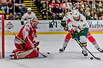 29 December 2018: University of Vermont Catamount Forward Vlad Dzhioshvili, a Sophomore from Moscow, Russia, controls the puck in front of Rensselaer Engineer Goaltender Owen Savory, a Freshman from Cambridge, ON, in second period action at Gutterson Fieldhouse in Burlington, Vermont. The Catamounts rallied from a 2-0 deficit to defeat RPI 4-2 and win the annual Catamount Cup Tournament. Mandatory Credit: Ed Wolfstein Photo *** RAW (NEF) Image File Available ***