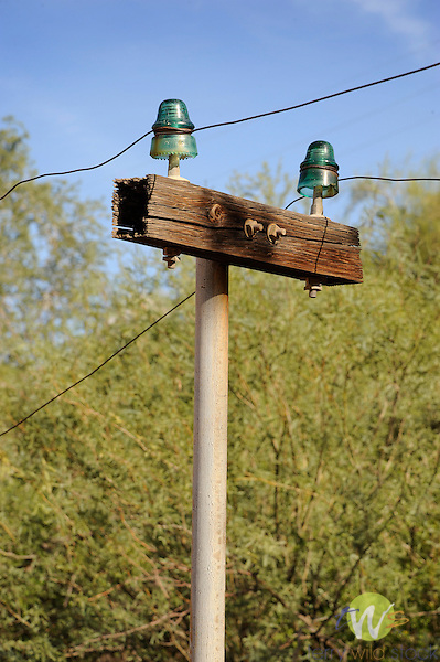 Tortilla Flat Restaurant. Tonto National Forest. AZ. Knob and tube power line.