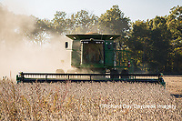 63801-07305 Soybean harvest with John Deere combine in Marion Co. IL