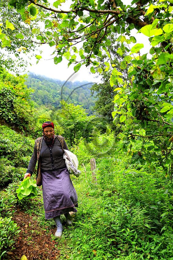 A woman in traditional dress coming back from the honey harvest.///Retour de la récolte de miel pour cette femme en tenue traditionelle.