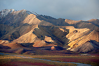 Early morning light gives life to the colors of the tundra and illuminates the jagged Alaska Range.