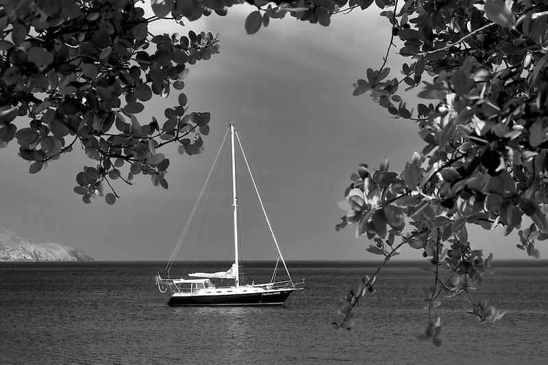 Sail boat moored at Megan's Bay. St. Thomas. US Virgin Islands