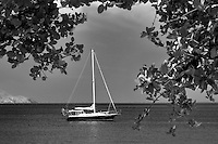 Sail boat moored at Megan's Bay. St. Thomas. US Virgin Islands
