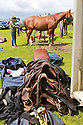 Tyrella House Polo gear ready for the horses at Tyrella House, County Down, Monday June3rd, 2019. (Photo by Paul McErlane for Belfast Telegraph)