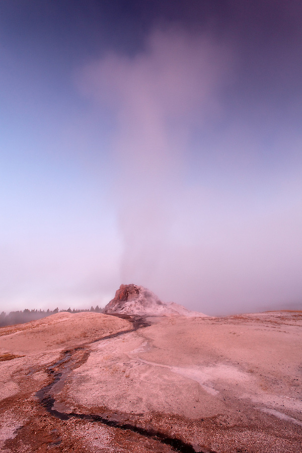 Steam rising from White Dome Geyser at early dawn, Firehole Lake Drive, Yellowstone National Park, Wyoming, USA