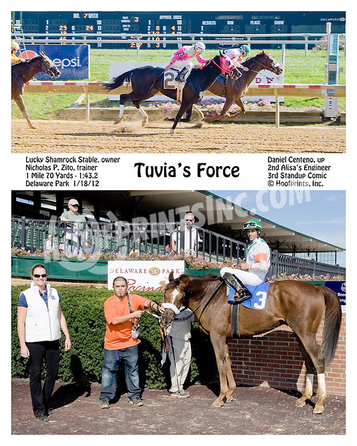 Tuvia's Force winning at Delaware Park on 10/18/12