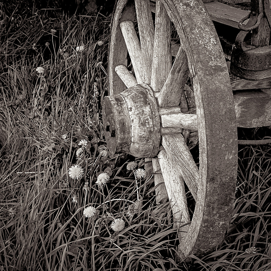 WAGON WHEEL -- Taken on a friend's farm in Iola, Wisconsin, USA. Panatomic-X developed in Microdol-X dilluted 1:3. #michaelknapstein #midwestmemoir #blackandwhite #B&W #monochrome #motherfstop #wisconsin  #bwphotography #myfeatureshoot  #fineartphotography #americanmidwest #squaremag #lensculture #mifa #moscowfotoawards #moscowinternationalfotoawards #rps #royalphotographicsociety #CriticalMass #CriticalMassTop200 #photolucida #contemporaryphotography  #portfolioshowcase11 #thegalaawards #thepolluxawards #flakphoto #ipe160 #grainedephotographe  #galleryofwisconsinart