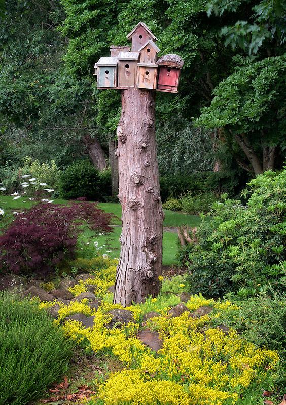Oregon Garden. Silverton, Oregon