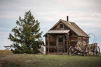 About a quarter of a mile east of the town is a homestead complete with windmill, corrals, barn, house and of course, outhouse.<br /> <br /> 1880 TOWN in South Dakota is located 22 west of Murdo,  and has more than 30 buildings from the 1880 to 1920 era, authentically furnished with thousands of relics, historical accounts and photographs.  This is also the Longhorn Ranch and home to more than 100 Texas longhorn cattle.