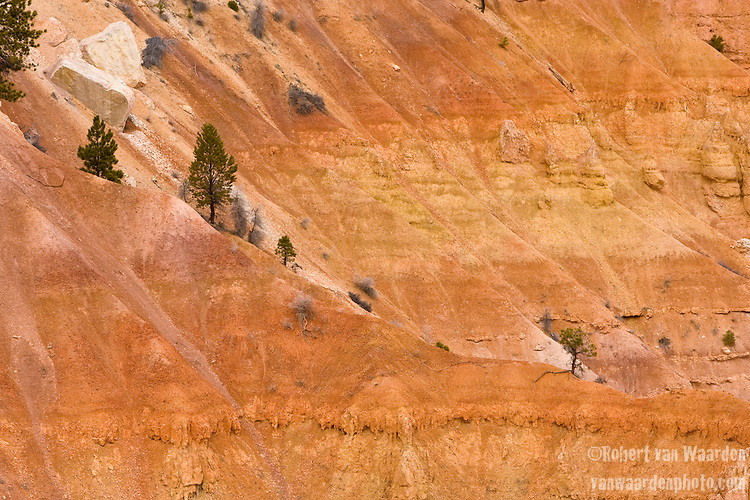 The red, yellow and orange cliffs of Bryce Canyon National Park, Utah, United States of America.