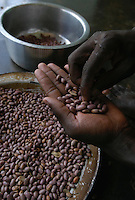 An orphan helps with chores, separating the bad from the good beans in the Kamwokya Foster Homes in Kampala, Uganda, March 22, 2004. The CRS-funded project helps orphans of parents with HIV/AIDS stay in school and have a future.  (Rick D'Elia)<br />