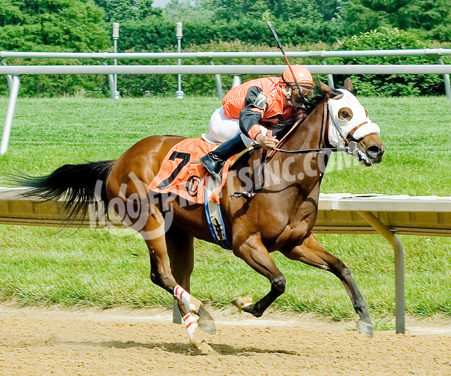 Fill Up Cohen wiining at Delaware Park on 6/2/12