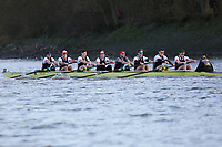 Crew: 3   Thames (Hurley)   Op Champ<br /> <br /> Quintin Head 2019<br /> <br /> To purchase this photo, or to see pricing information for Prints and Downloads, click the blue 'Add to Cart' button at the top-right of the page.