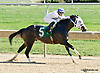 Irish Donnie winning at Delaware Park on 9/27/14