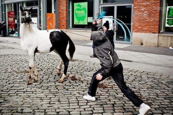 "Dublin, Ireland, January 2, 2011:.Boy beats a horse during the Smithfield horse market in central Dublin. This traditional market has now become a place for the young boys from poor northern neighborhoods of the city trade the horses, selling them for as little as 80 Euros, mistreating them and roaming on them up and down the slippery square..Since the beginning of crisis, between 10 and 20 thousand horses have become homeless or went in the hands of the youths in urban areas. Lots of Irish people who used to buy horses for fun during the boom years of ""Celtic Tiger"", now are abandoning them faced with expenditure of 35 Euro a week to properly maintain a horse. This animal previously worth 2000 Euro now can be purchased for as little as 80 Euro. New owners keep their horses in city greens, city ruins, or their house gardens, in very bad conditions. Most do not get much food, many are starving, dying, being mistreated..(Photo by Piotr Malecki / Napo Images)..Dublin, Irlandia, 2/01/2011:.Chlopak bije konia podczas comiesiecznego targu koni w Smithfield w centrum Dublina..Ten tradycyjny targ  stal sie miejscem gdzie mlodzi chlopcy z biednych polnocnych dzielnic miasta handluja konmi po 80 euro, zle je traktujac i szalejac na nich po calym placu. .Od poczatku kryzysu od 10 do 20 tysiecy koni zostalo wyrzuconych na ulice przez wlascicieli nie chcacych placic okolo 35 Euro/tydzien za ich utrzymanie. Wpadaja one czesto w rece mlodziezy z ubogich dzielnic miasta, ktora handluje nimi, bije, glodzi, trzyma w skrajnie trudnych warunkach, w przydomowych ogrodkach lub ruinach budynkow i szaleje na nich po miescie. Kon, ktory byl wart 2000 Euro teraz moze byc kupiony za 80. .Fot: Piotr Malecki / Napo Images."