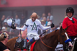 BALTIMORE, MD - MAY 19: Mike Smith celebrates after winning the Preakness Stakes aboard Justify, #7, at Pimlico Race Course on May 19, 2018 in Baltimore, Maryland (Photo by Alex Evers/Eclipse Sportswire/Getty Images)