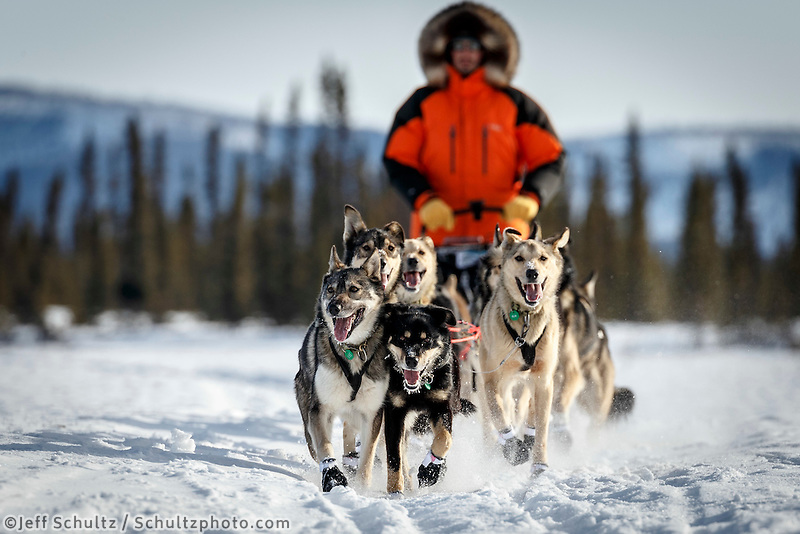 Pete Kaiser runs on the trail just before the Cripple checkpoint on Thursday March 10 during Iditarod 2016.  Alaska.    <br /> <br /> Photo by Jeff Schultz (C) 2016  ALL RIGHTS RESERVED