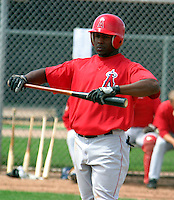 Los Angeles Angels ST 2004