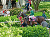 Tell a Great Story before The Go for Wand Stakes at Delaware Park on 6/15/13