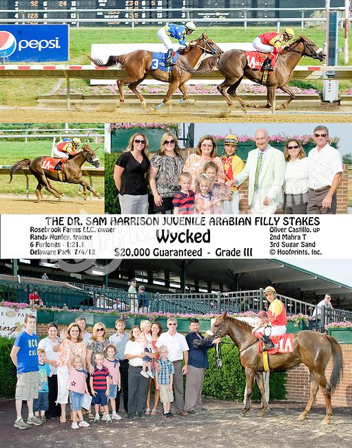 Wycked winning The Dr. Sam Harrison Juvenile Arabian Stakes at Delaware Park on 7/4/12
