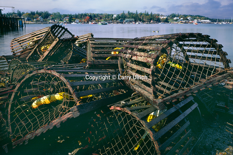 Lobster traps<br />