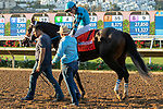 DEL MAR, CA  SEPTEMBER 2:  Trainer Peter Miller offers Norberto Arroyo, Jr congratulations after #7 Nucky wins the Runhappy Del Mar (Grade l) on September 2, 2019, at Del Mar Thoroughbred Club in Del Mar, CA.( Photo by Casey Phillips/Eclipse Sportswire/CSM)