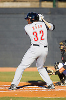 Telvin Nash #32 of the Greeneville Astros at bat against the Bristol White Sox at Boyce Cox Field July 1, 2010, in Bristol, Tennessee.  Photo by Brian Westerholt / Four Seam Images