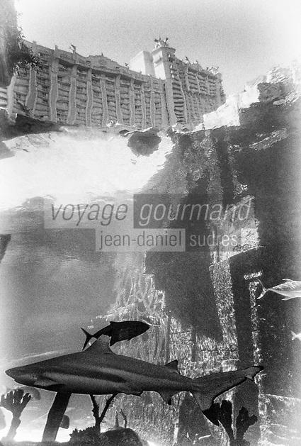 Iles Bahamas : Ouragan Dorian , raz de marée et vie sous marine //  Bahamas Islands: Hurricane Dorian, tidal waves and underwater life