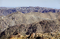 The hill-top town of Beni Bakr in the mountainous Yafa region south of Marib. For centuries men have been leaving this poor, rural and very mountainous area to seek work elsewhere.
