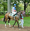 Baltic Avenue with Kevin Tobin aboard winning The Gentleman International Fegentri at Delaware Park on 9/3/11