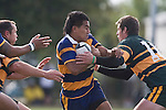 Patumahoe firstfive J. Araihe tries to break through between Kevin Farrell & B. Clark. CMRFU Counties Power Premier Club Rugby game between Patumahoe & Pukekohe played at Patumahoe on April 12th, 2008..The halftime score was 10 all with Pukekohe going on to win 23 - 18.