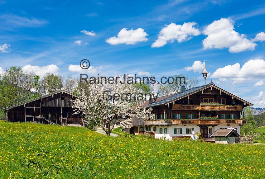 Austria, Tyrol, Reith near Kitzbuehel: Tyrolean farmhouse and Wilder Kaiser mountains | Oesterreich, Tirol, Reith bei Kitzbuehel: Tiroler Bauernhof vorm Wilder Kaiser Gebirge