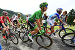 Green Jersey Marcel Kittel (GER) Quick-Step Floors in action during Stage 8 of the 104th edition of the Tour de France 2017, running 187.5km from Dole to Station des Rousses, France. 8th July 2017.<br /> Picture: ASO/Alex Broadway | Cyclefile<br /> <br /> <br /> All photos usage must carry mandatory copyright credit (&copy; Cyclefile | ASO/Alex Broadway)