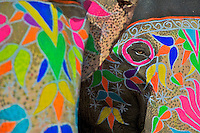 The Eye of the Elephant. Festival Jaipur Rajasthan India