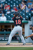 Tomas Telis (18) of the Rochester Red Wings at bat against the Charlotte Knights at BB&T BallPark on May 14, 2019 in Charlotte, North Carolina. The Knights defeated the Red Wings 13-7. (Brian Westerholt/Four Seam Images)