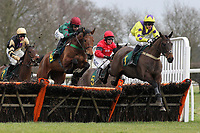 Malapie ridden by Adam Pogson leads the field in the European Breeders Fund National Hunt Novices Hurdle