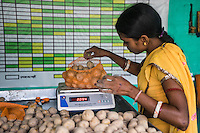 Collection centre worker Seema Devi, 23, grades potatoes and packs them for sale in the collection centre in Machahi village, Muzaffarpur, Bihar, India on October 27th, 2016. Non-profit organisation Technoserve works with women vegetable farmers in Muzaffarpur, providing technical support in forward linkage, streamlining their business models and linking them directly to an international market through Electronic Trading Platforms. Photograph by Suzanne Lee for Technoserve