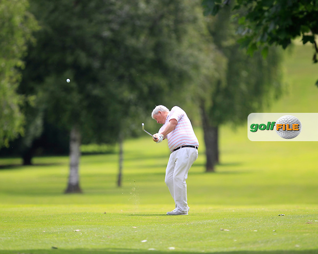Ian Smyth (Clandeboye) on the 7th fairway during Round 1 of the Leinster Seniors Amateur Open Championship at Enniscorthy Golf Club on Tuesday 23rd June 2015.<br /> Picture:  Thos Caffrey / www.golffile.ie