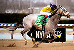 OZONE PARK, NEW YORK: MAR 10: *, #5 Skyler's Scramjet, ridden by Trevor McCarthy, wins the Tom Fool Handicap at Aqueduct  Racetrack, on March 10, 2018 in Ozone Park, New York. ( Photo by Heary /Eclipse Sportswire/Getty Images)