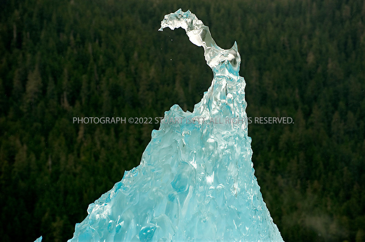 9/18/2008--Petersburg, Alaska, USA..A piece of glacier ice that has broken off during the Alaska summer and floated into Frederic Sound. The ice's deep blue color comes from the intense pressure under which it was created in the glacier which squeezes out any air from the water...Petersburg is on the north end of Mitkof Island, near the Tongass National Forest. A major fishing port, the town of 3500 is also a good jumping off point to see the Alaskan wilderness in south eastern Alaska. Petersburg can be reached on Alaskan Airlines via Seattle or nearby Juneau to the north...©2008 Stuart Isett. All rights reserved.