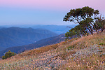 The Australian Alps at daybreak from Alpine National Park, VIictoria, Australia (from Razor Back Ridge)
