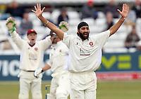 Cricket 2009-09