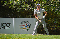 Danny Willett (GBR) watches his provisional tee shot on 2 during round 1 of the World Golf Championships, Mexico, Club De Golf Chapultepec, Mexico City, Mexico. 2/21/2019.<br /> Picture: Golffile | Ken Murray<br /> <br /> <br /> All photo usage must carry mandatory copyright credit (© Golffile | Ken Murray)