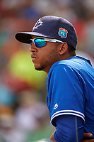 Toronto Blue Jays shortstop Richard Urena (78) in the dugout during a Spring Training game against the Pittsburgh Pirates on March 3, 2016 at McKechnie Field in Bradenton, Florida.  Toronto defeated Pittsburgh 10-8.  (Mike Janes/Four Seam Images)