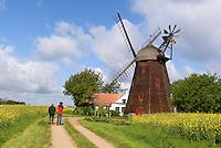 Windm&uuml;hle Swanem&oslash;lle  in Swaneke auf der Insel Bornholm, D&auml;nemark, Europa<br /> windmill Swanem&oslash;lle  in Swaneke, Isle of Bornholm Denmark