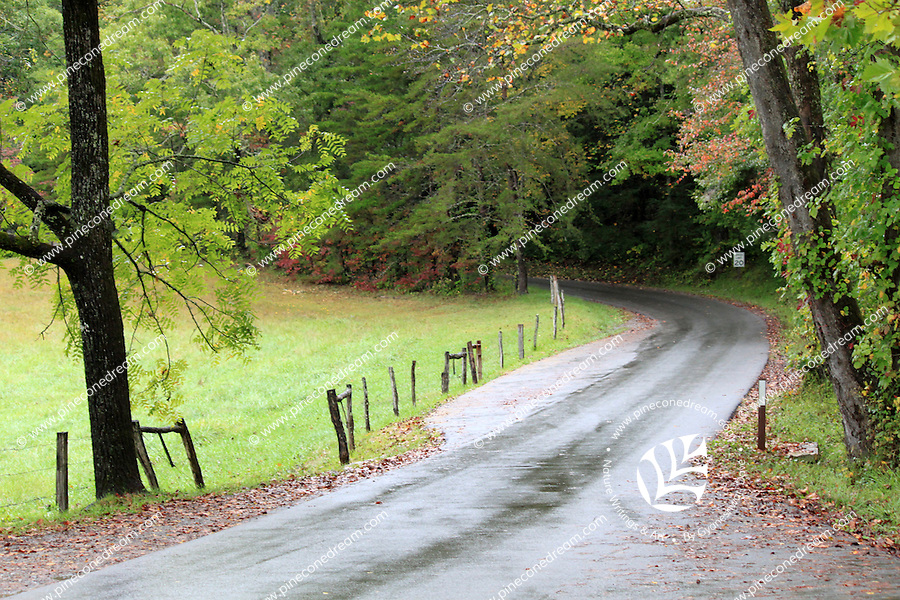 Stock photo: Passing through a turning point in the loop road of the Cades Cove valley of the great smoky mountain national park in autumn, just after rain.