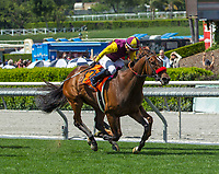 ARCADIA, CA APRIL 8: #7 Hillhouse High ridden by Corey Nakatani wins the Royal Heroine Stakes (Grade ll) on April 8, 2017 at Santa Anita Park in Arcadia, CA. (Photo by Casey Phillips/Eclipse Sportswire/Getty Images)