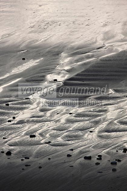 Europe/France/Bretagne/29/Finistère/Presqu'île de Crozon/Crozon: Anse de Dinan la plage et ses bancs de sable