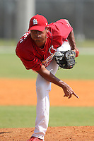 St. Louis Cardinals minor league pitcher Ricky Martinez #38 delivers a pitch during a spring training game vs the Florida Marlins at the Roger Dean Sports Complex in Jupiter, Florida;  March 25, 2011.  Photo By Mike Janes/Four Seam Images