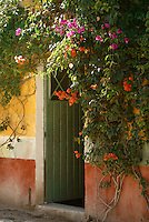 Flowers surrounding the doorway of a house  in the 19th century mining town of Mineral de Pozos, Guanajuato, Mexico.